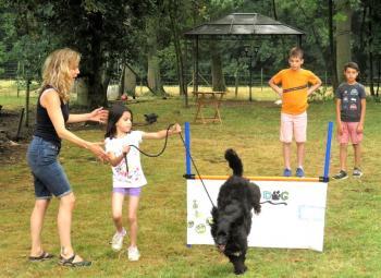 :formation_enfant_chien.jpg